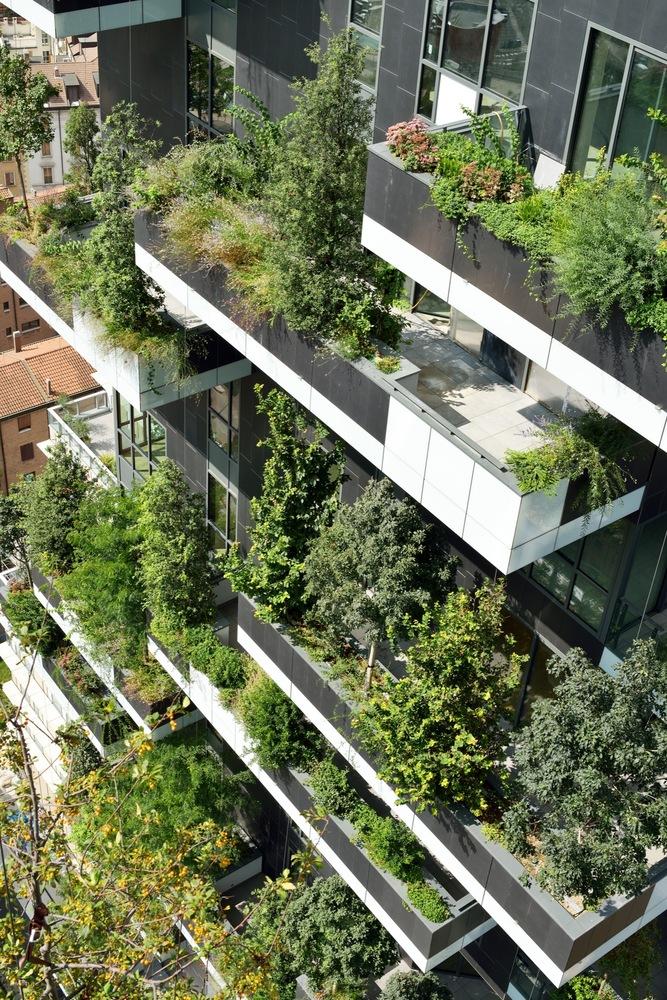 Trädgårdsdesign i framtiden